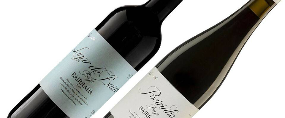 Disse vinene må du rett og slett prøve