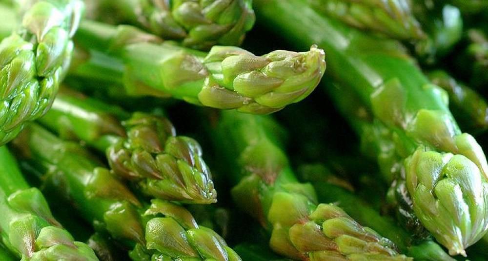 Knasende sprø asparges