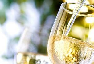 Nyhetene på polet september 2014 - hvitvin og musserende