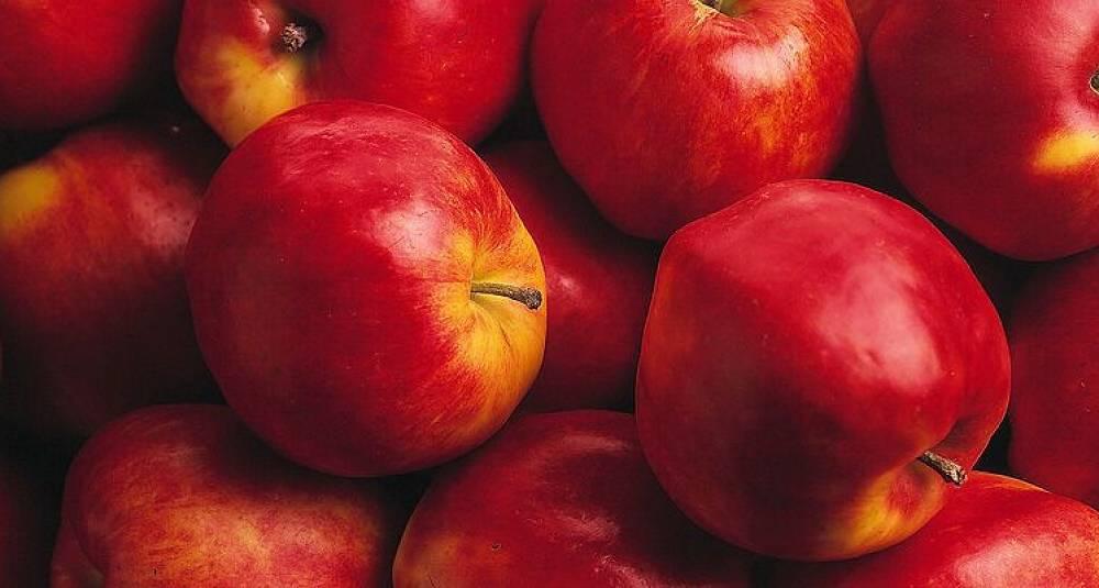 Epler passer også i middagsretter med kjøtt