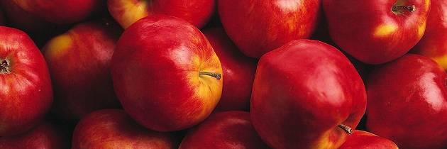 Gode tips om hva du skal bruke eplene til