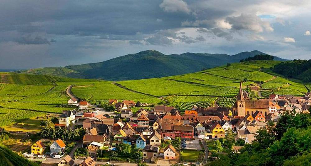 Test av riesling fra Alsace - 2007 og eldre