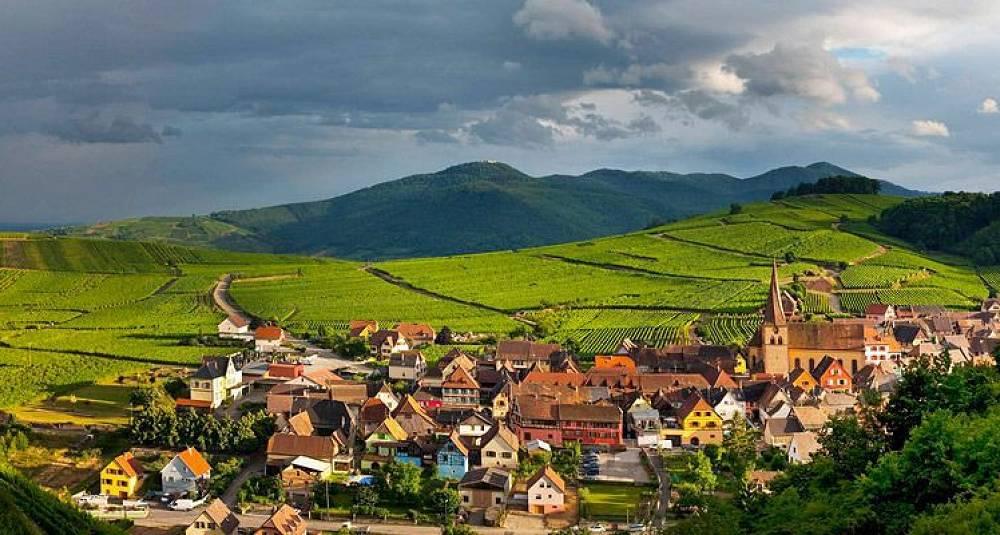 Test av riesling fra Alsace - 2009 og 2008