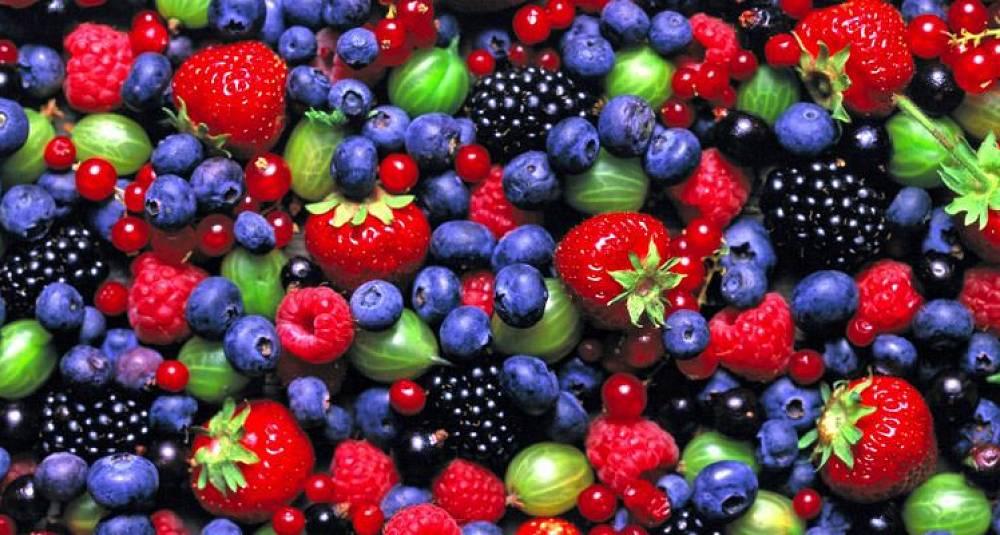 Slik tar du vare på sommerens bær