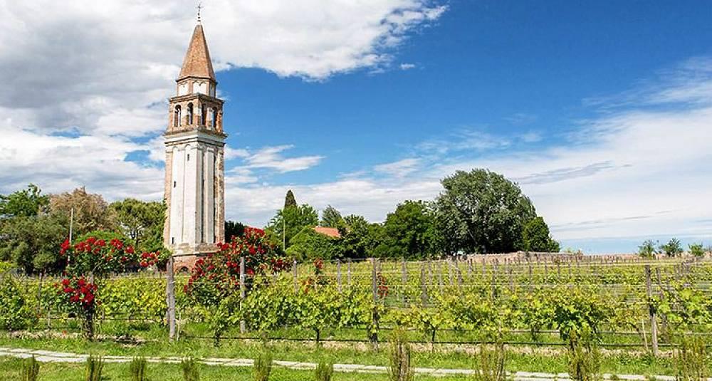 Venezia byr på enda mer vin