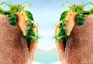 Sandwich med ishavsrøye og brønnkarse