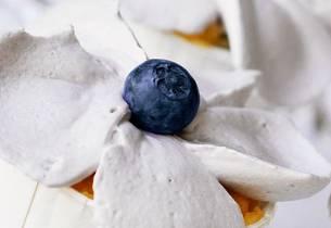 Vaniljecupcakes med blåbærmousse
