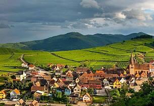 Test av riesling fra Alsace 2013