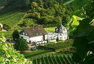Her lages Tysklands mest etterspurte rødvin