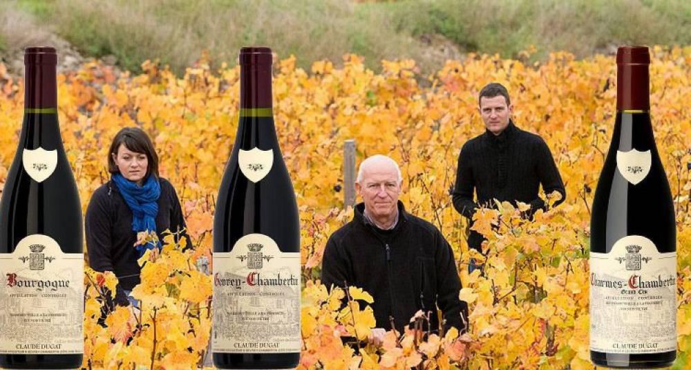 Så sykt gode viner som disse må du lete lenge etter