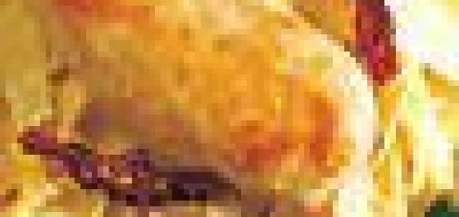 Kyllingfilet med pasta