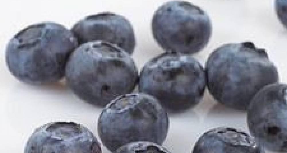Blåbærcurd