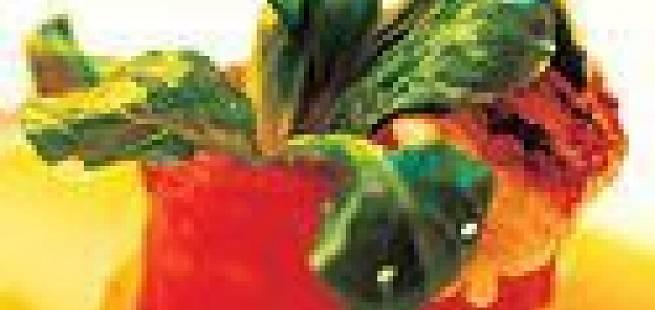 Tomattartar med sjøkreps og mangosaus