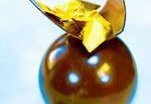 Sjokoladekule fylt med marinerte bjørnebær på sjokolade- og hasselnøttganache