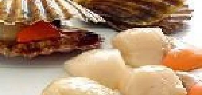 Kamskjelltartar med chili, sitrus og koriander