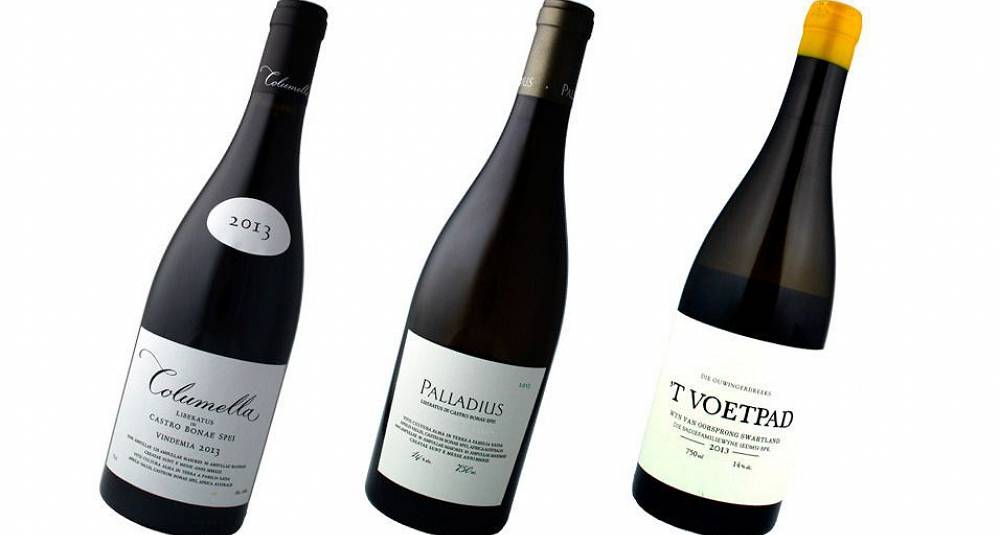 Her har du Sør-Afrikas aller beste viner