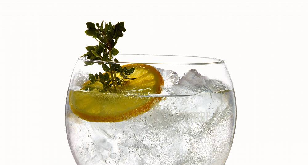 Thyme Is On Our Side Gin Tonic