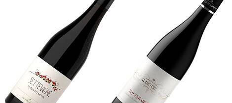 Oppdag en ny italiensk vin. Den kan bli din favoritt