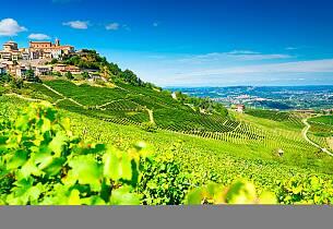 Sett av en lørdag ettermiddag for å smake uimotståelige viner fra Barolo