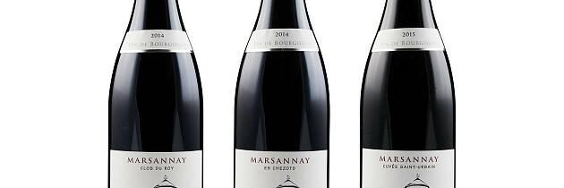 Dette er noe av den beste vinvalutaen du får fra Burgund