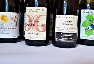 Med disse blir beaujolais nouveau-feiringen en suksess