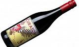 Knallgod billigvin fra Sør-Afrika med god samvittighet