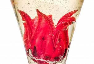 Champagne Apricato