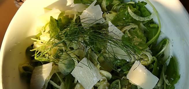 Salat med parmesan og fennikel