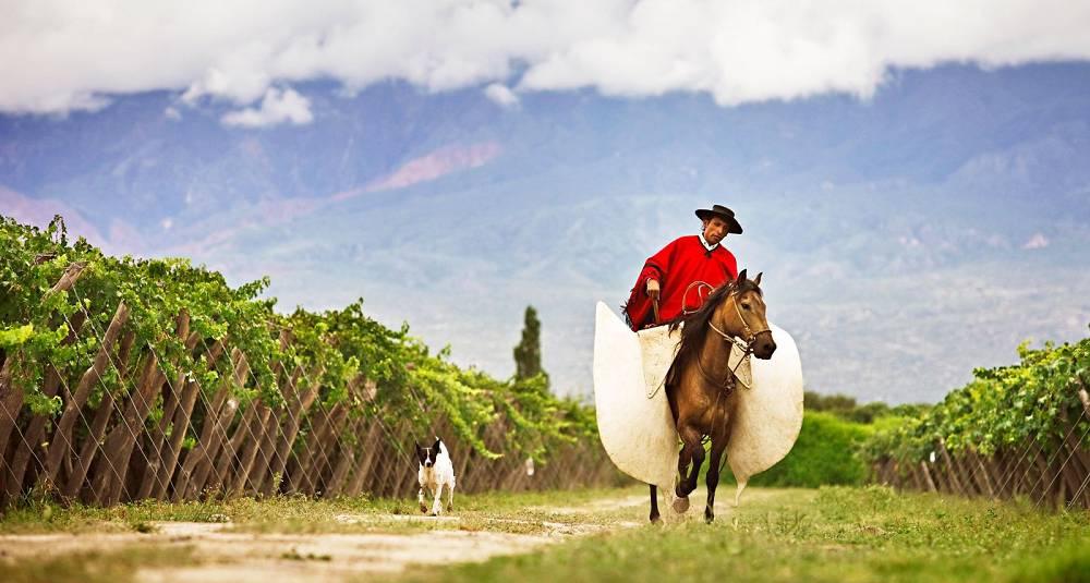 En unik mulighet til å få smake 15 deilige Argentinske viner