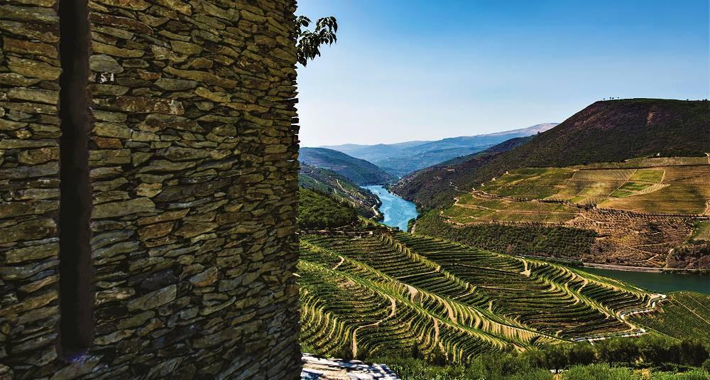 Derfor er Douro blitt den nye kilden til friske viner