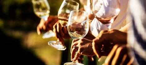 Utsolgt! Sør-Afrika er det aller heteste på vinfronten for tiden. Smak deg gjennom nærmere 40 viner på toppnivå