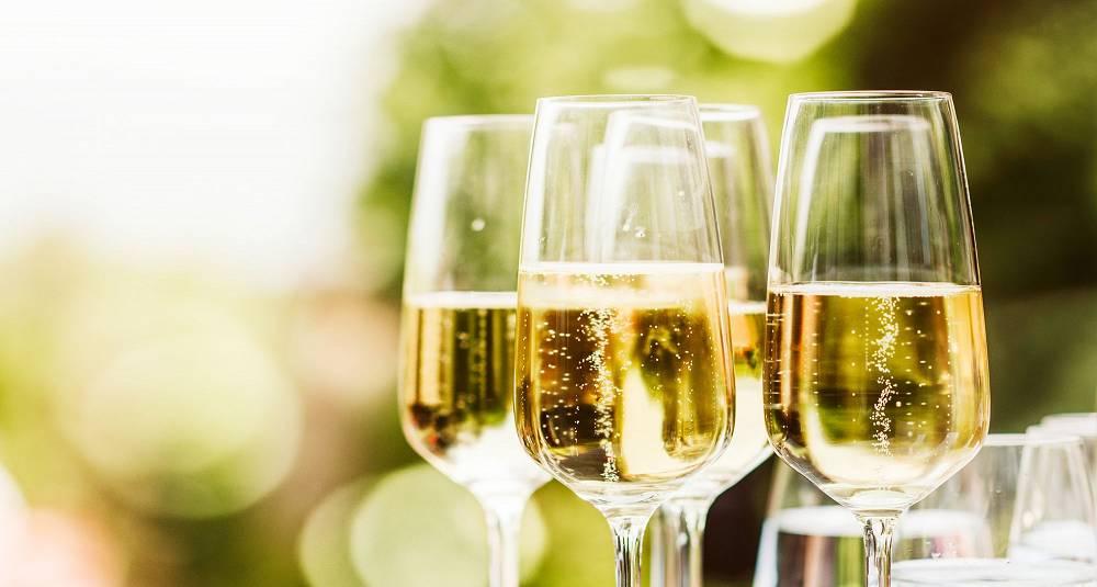 Smak lekre champagner fra et meget spennende vinhus