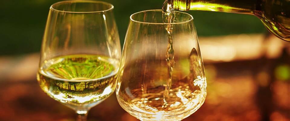 En helaften med viner fra Chablis og Burgund - samt fire 1. cru