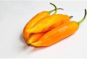 Aji amarillo  - gul chilipasta