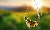 Smak 9 viner fra en av Rheingaus mest anerkjente produsenter