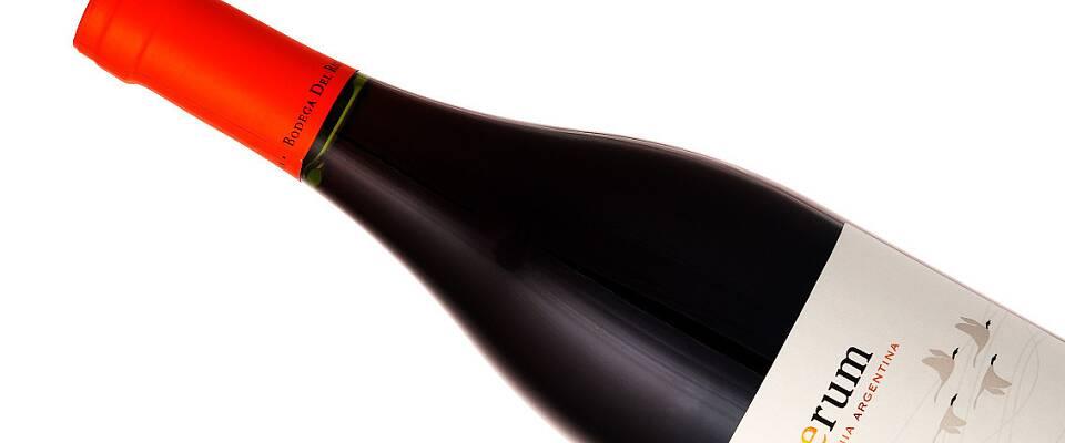 Dette supre pinot noir-kjøpet viser hvilket potensial for kvalitet Patagonia byr på