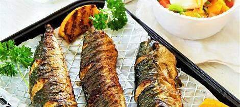 Makrell fra grillen er selve smaken av sommer