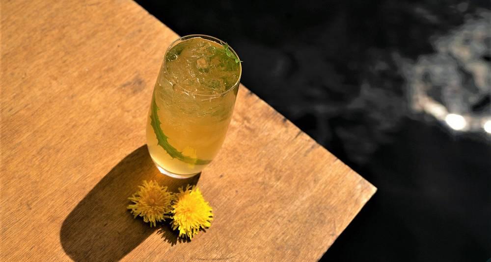 Løvetann - en naturnær drink med akevitt og løvetannsirup