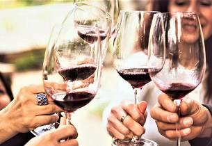 Du vil garantert trives i Apéritifs Mat- & vinklubb. Se alt du har gått glipp av