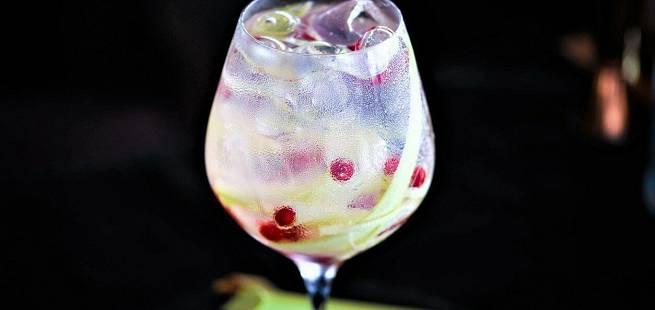 Gin tonic med rabarbra