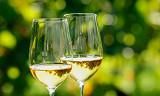 Smak enestående rieslinger fra en av Tysklands ledende vinmakere