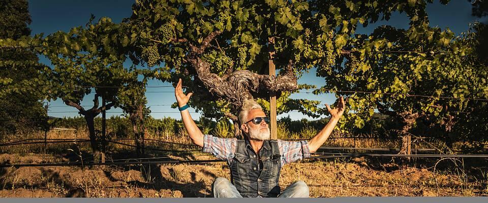 Møt mannen som prater med vinplantene