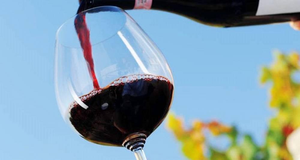 Vinsmaking Oslo 2020