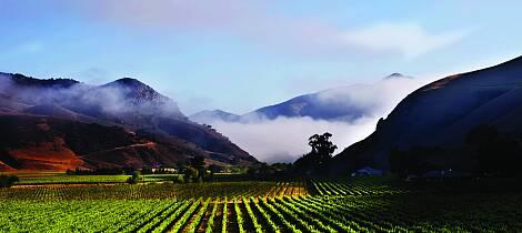 Smak herlig californisk pinot noir og chardonnay fra en ikonisk vinmaker