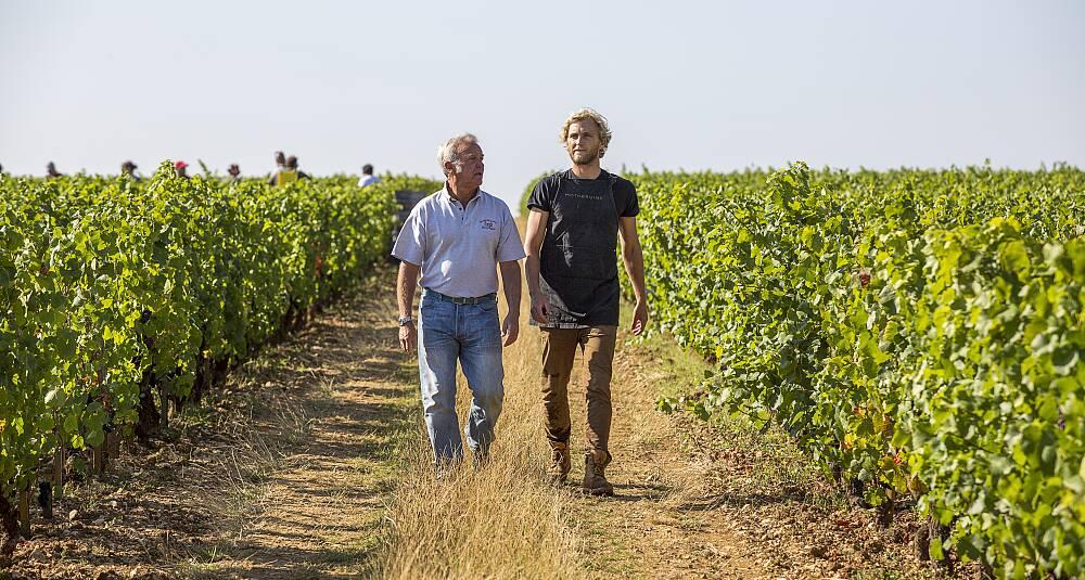 Vinene far og sønn lager er helt fantastiske
