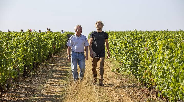 I vinmarken: François Labet og sønnen Edouard som kommer til å overta etterhvert.