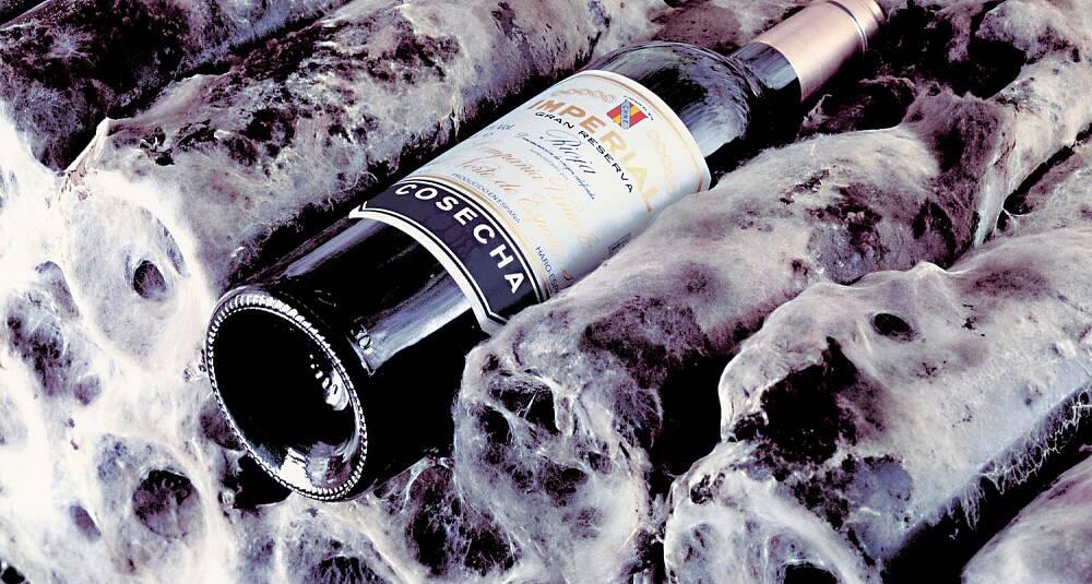 Lørdag denne uke blir denne vinen sensasjonelt billig