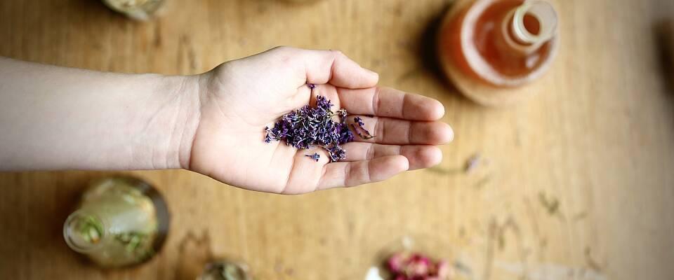 De lager de lekreste drinker med gratis ingredienser fra naturen - eller hagen