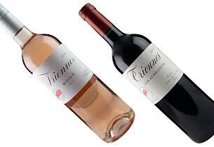 Slik smaker Provence-vin når topprodusent fra Burgund står bak
