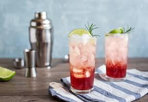 Sloe gin fizz drinkoppskrift